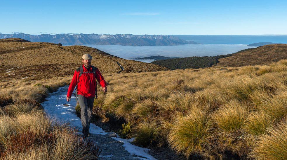 Specialista na Nový Zéland
