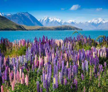 Poznávací zájezdy Nový Zéland