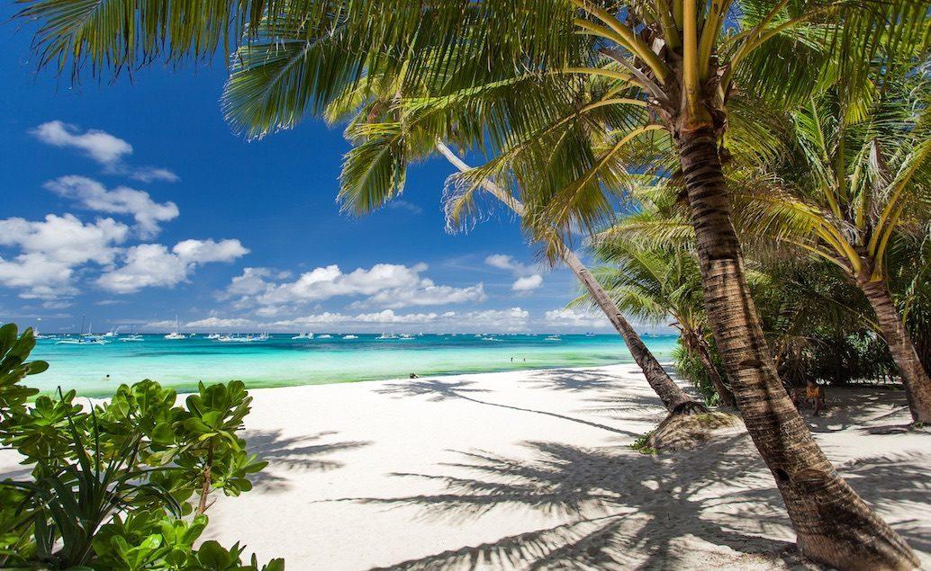 Nový Zéland, Austrálie, Fidži