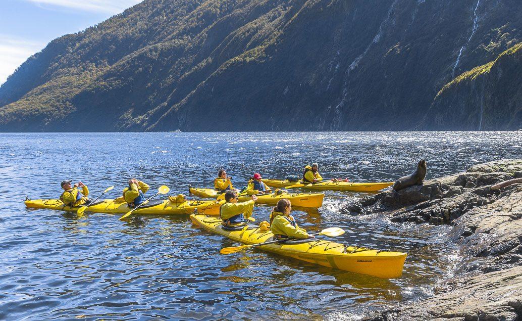 Na kajaku po Milford Sound