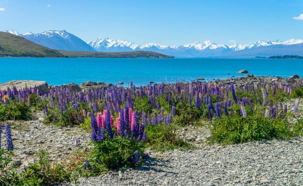 Nový Zéland aktivně pro mladé Pukaki